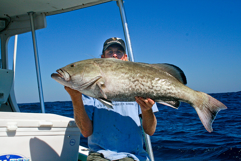 grouper-fishing-tampabay-florida