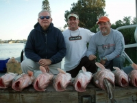 fishtaxi-charters-clearwater-2012