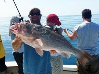 fishtaxi-fishing-charters-florida-2012-6