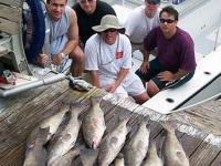 grouper-fishing-tampa-charter
